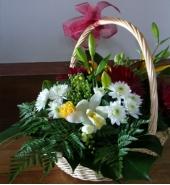 Bloom basket